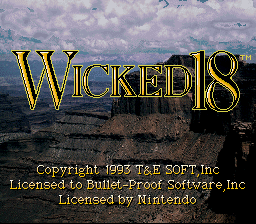 Обложка игры Wicked 18 Golf (Super Nintendo - snes)